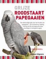 Grijze roodstaart papegaaien