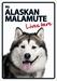 Alaskan Malamute Lives Here - Waakbord - A5